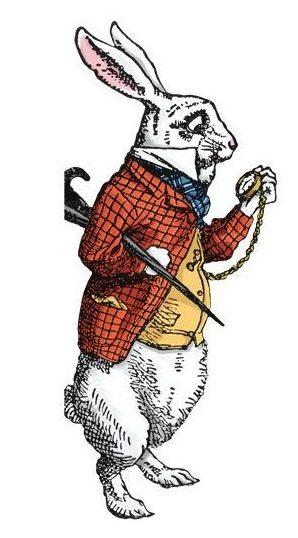 lapin-alice-pays-des-merveilles-suis-je-facturable-agence-nerf-de-la-guerre